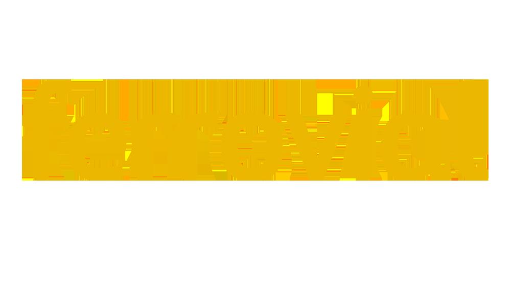 ferrovial-resized-logo
